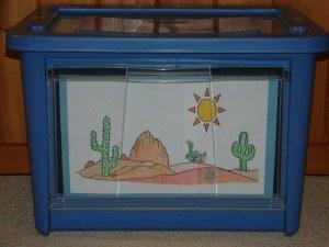 Desert bin photo